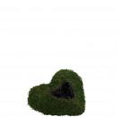 Plant heart moss, D30cm, green-nature